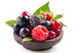 Fructe de padure Gradina Padurii